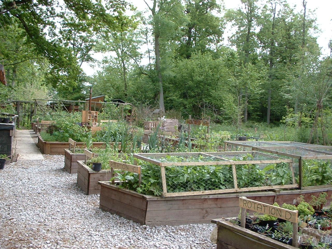 Интересные идеи для сада дачи своими руками 82