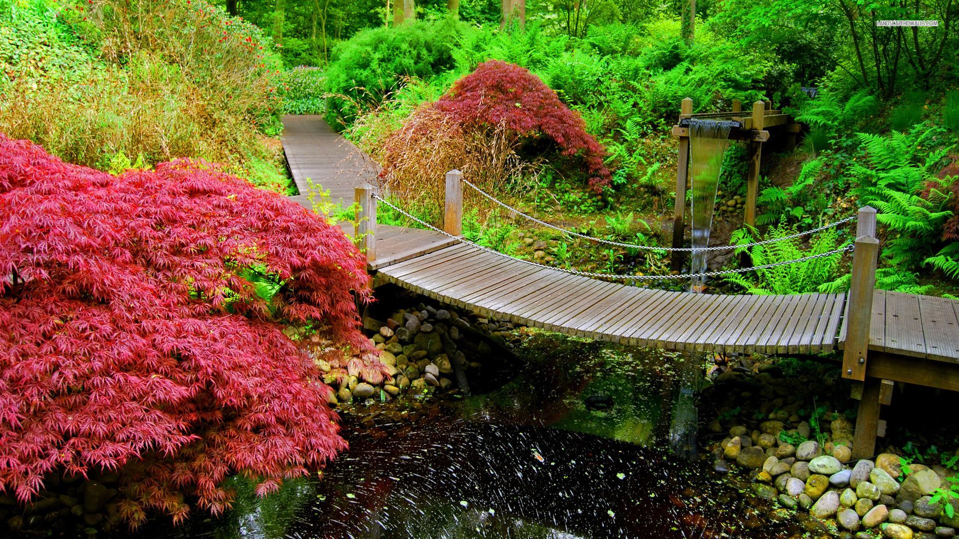 japanese-garden-2373-1920x1080 (1)