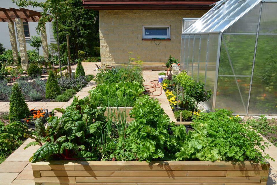 Ogrody-lublin-budowa_ogrodów_pielegnacja_Hortland_projetkowanie_ogrodow-kaskady-strumienie-mikolow12