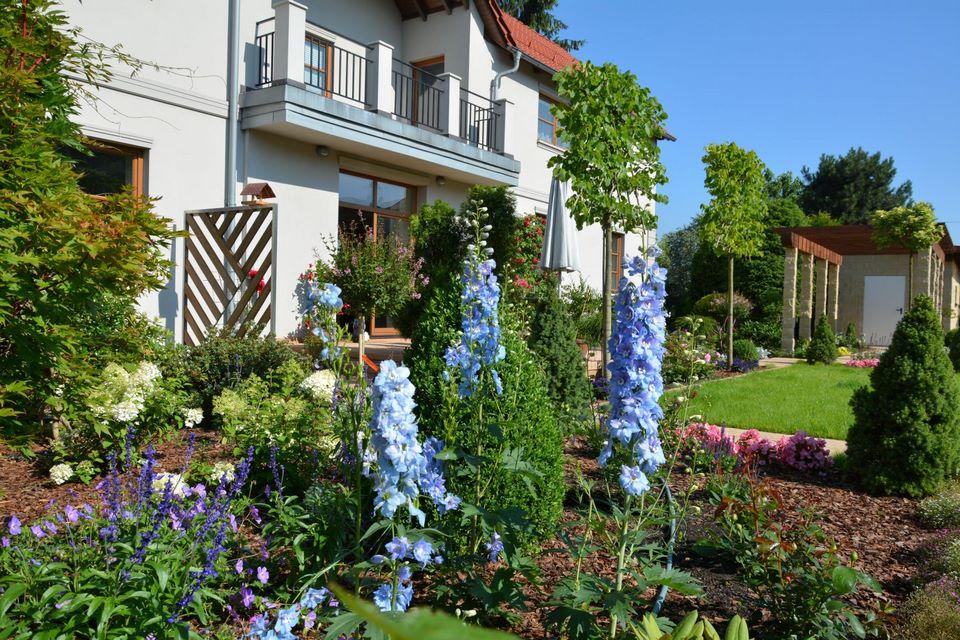 Ogrody-lublin-budowa_ogrodów_pielegnacja_Hortland_projetkowanie_ogrodow-kaskady-strumienie-mikolow8