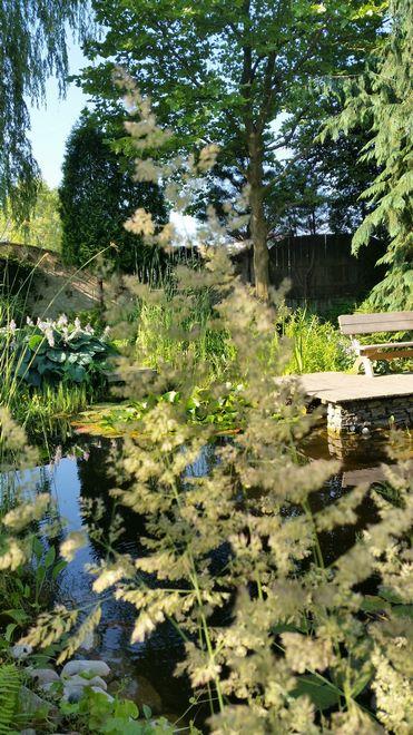 Ogrody-lublin-budowa_ogrodów_pielegnacja_Hortland_projetkowanie_ogrodow-stawik-kapielowy4