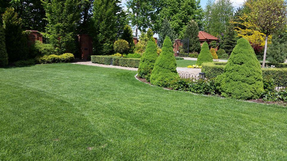 Ogrody-lublin-budowa_ogrodów_pielegnacja_Hortland_projetkowanie_ogrodow1