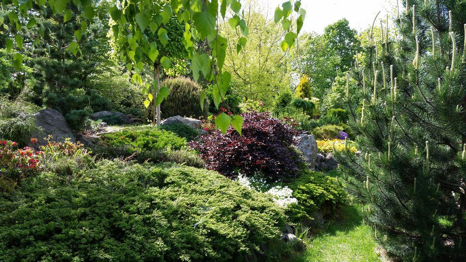 Ogrody-lublin-budowa_ogrodów_pielegnacja_Hortland_projetkowanie_ogrodow5