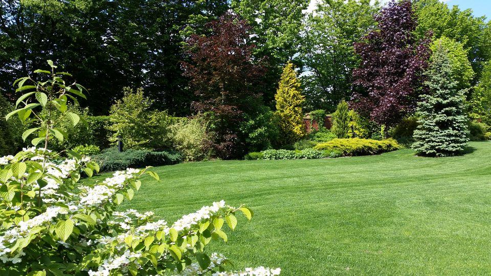 Ogrody-lublin-budowa_ogrodów_pielegnacja_Hortland_projetkowanie_ogrodow6