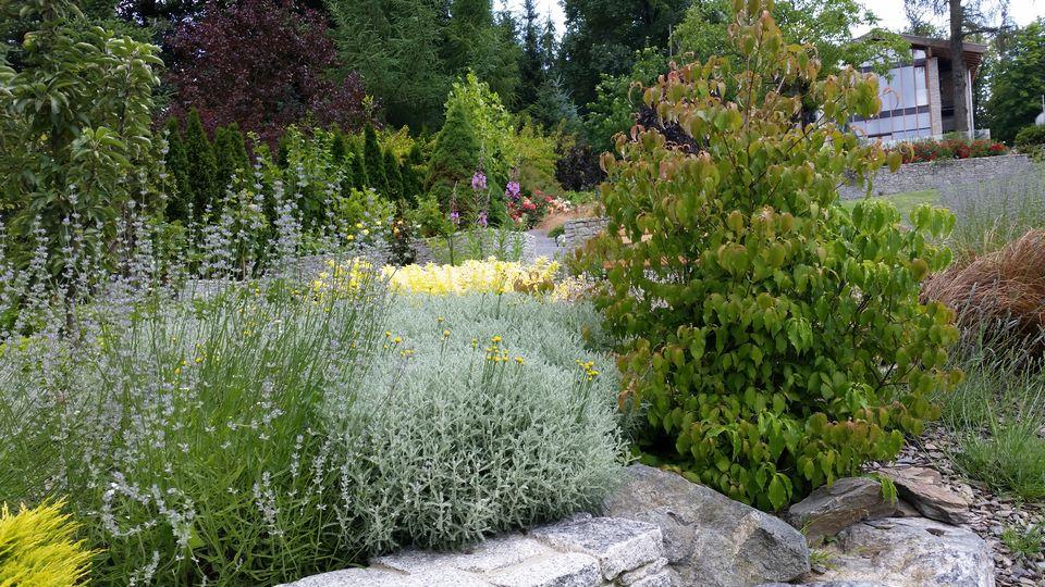 Ogrody-lublin-budowa_ogrodów_pielegnacja_Hortland_projetkowanie_ogrodow_naleczow14