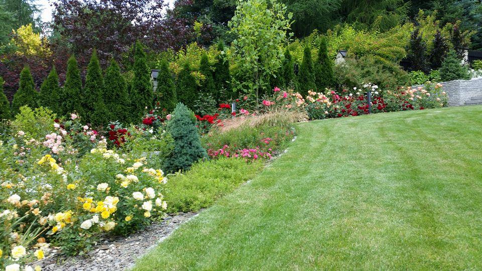 Ogrody-lublin-budowa_ogrodów_pielegnacja_Hortland_projetkowanie_ogrodow_naleczow16