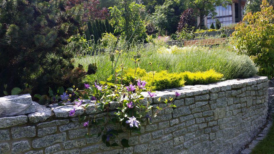 Ogrody-lublin-budowa_ogrodów_pielegnacja_Hortland_projetkowanie_ogrodow_naleczow7