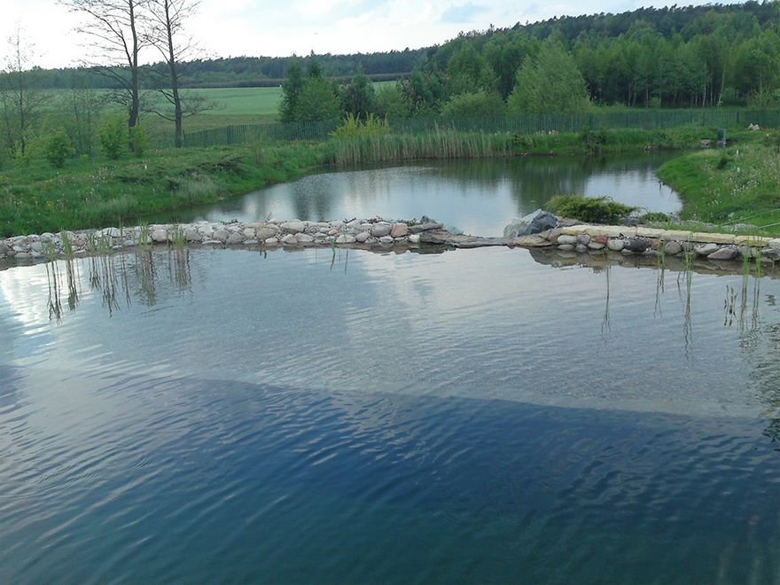 Staw_kapielowy_stoczek_Hortland_proejtkowanie_ogrodow_budowa-baseny3 (3)